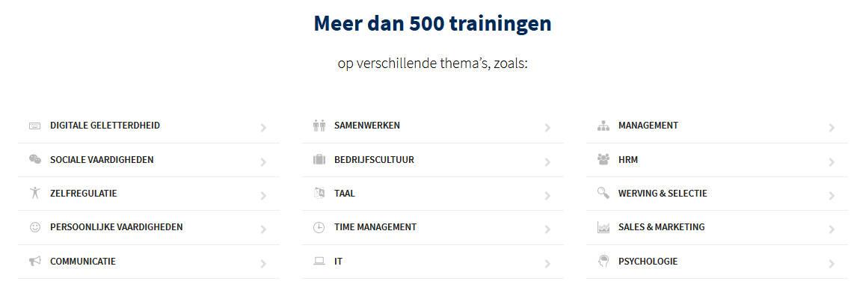 Aanbod Skillstown. Meer dan 500 Online Trainingen