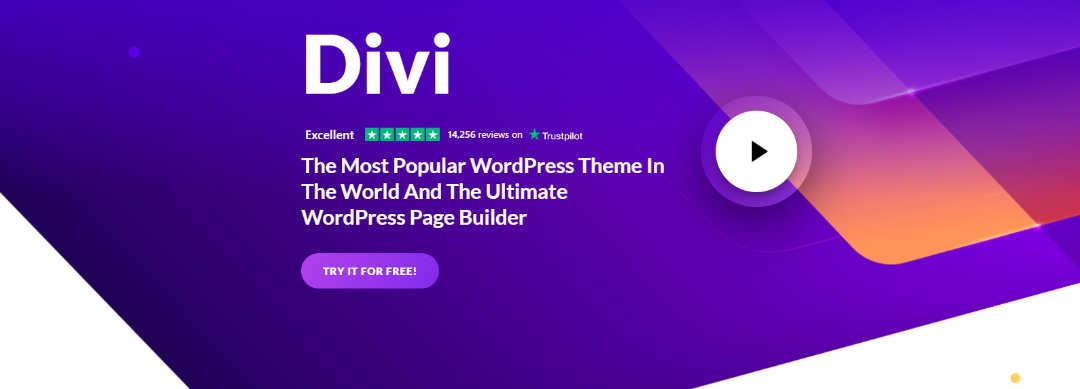 Divi Elegent Themes WordPress Thema website bouwer