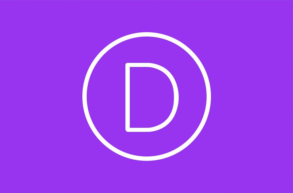 Logo Divi Theme