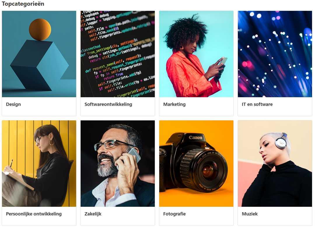 Online cursussen Udemy categorieen