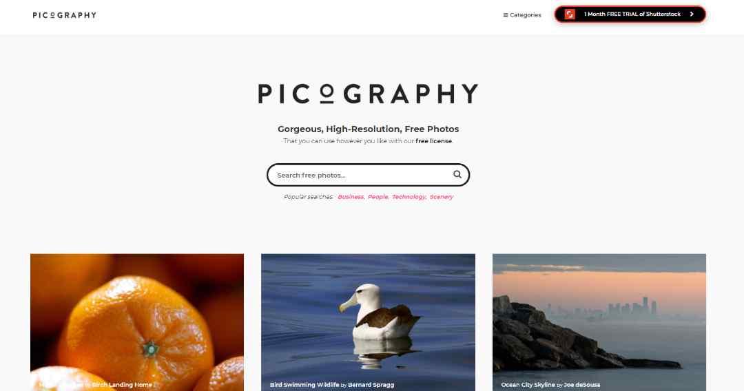 Picography rechten vrije stock afbeeldingen
