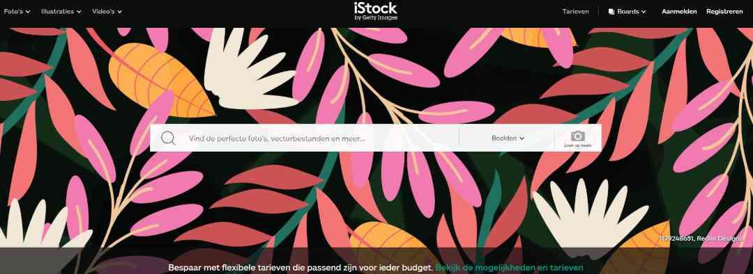 iStock rechtevrije fotos en stock afbeeldingen